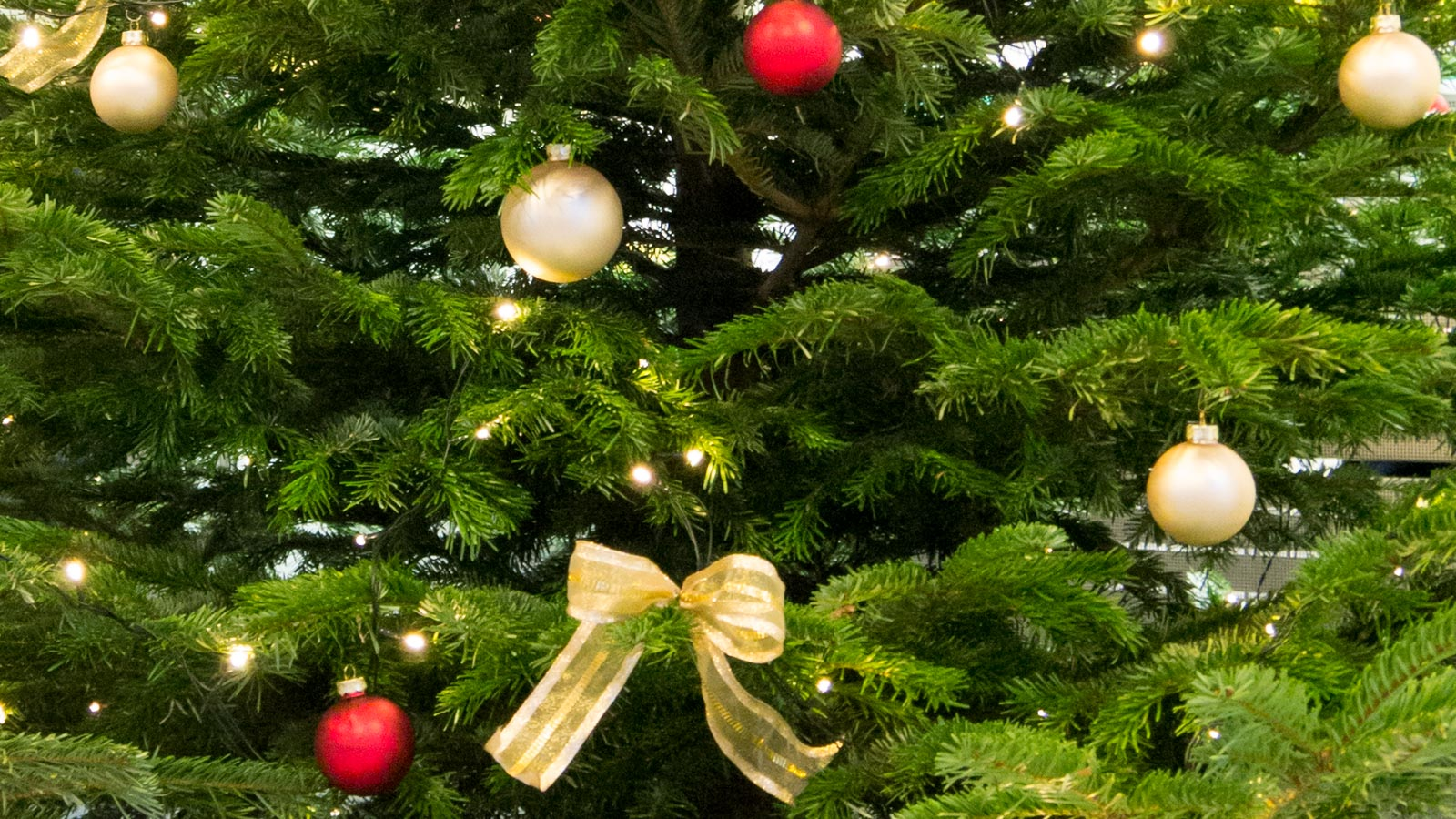 Nahaufnahme eines geschmückten Christbaums