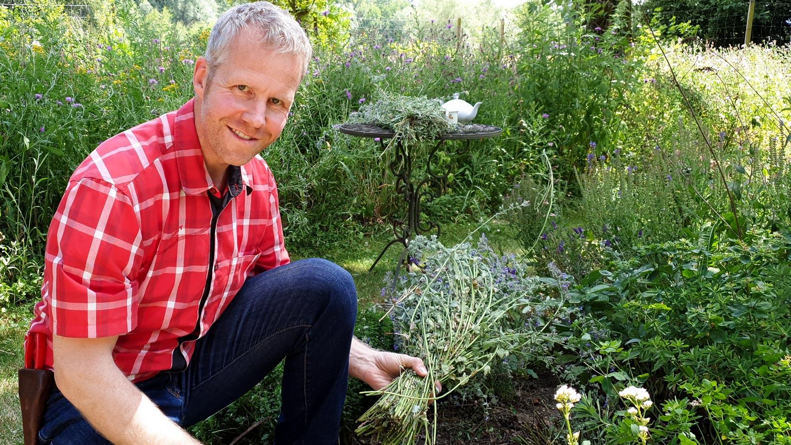Gartenberater Philippe Dahlmann kniet vor einem Staudenbeet mit Katzenminze
