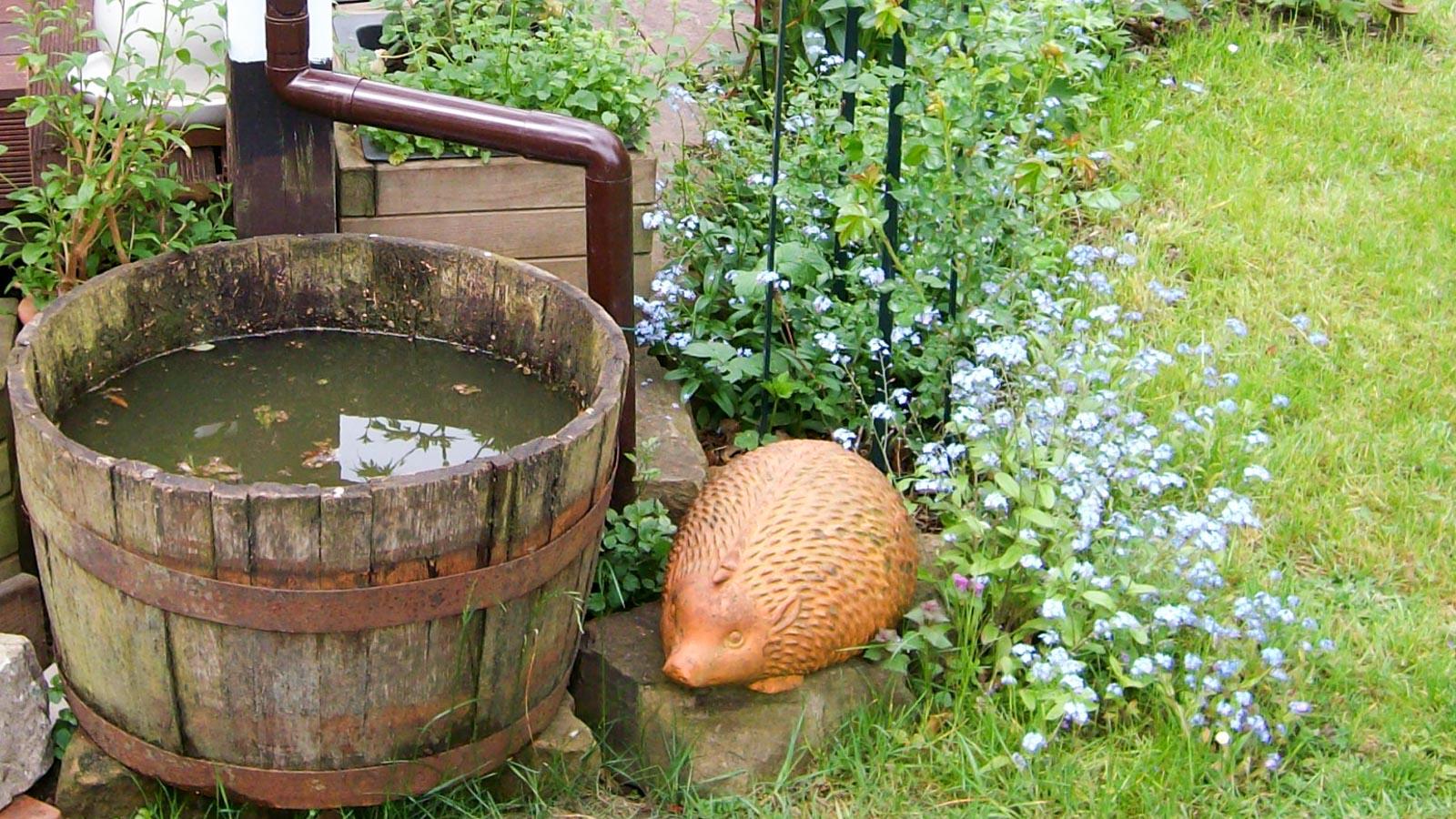 Holz-Regenfass im Garten