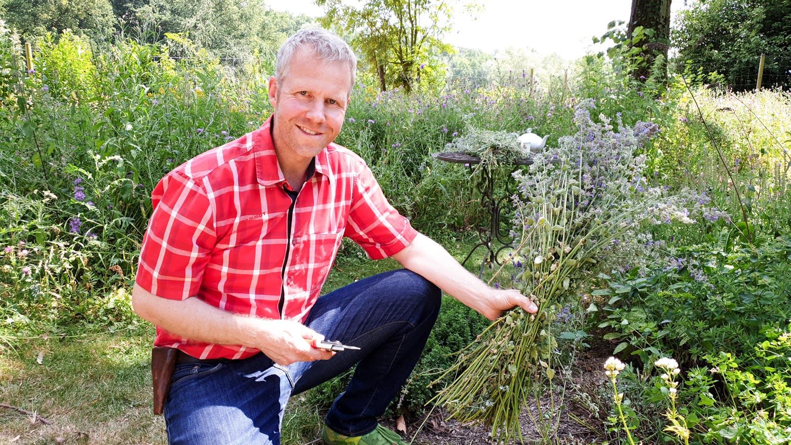 Gartenberater Philippe Dahlmann hockt mit einer Gartenschere vor einer soeben geschnittenen Katzenminze