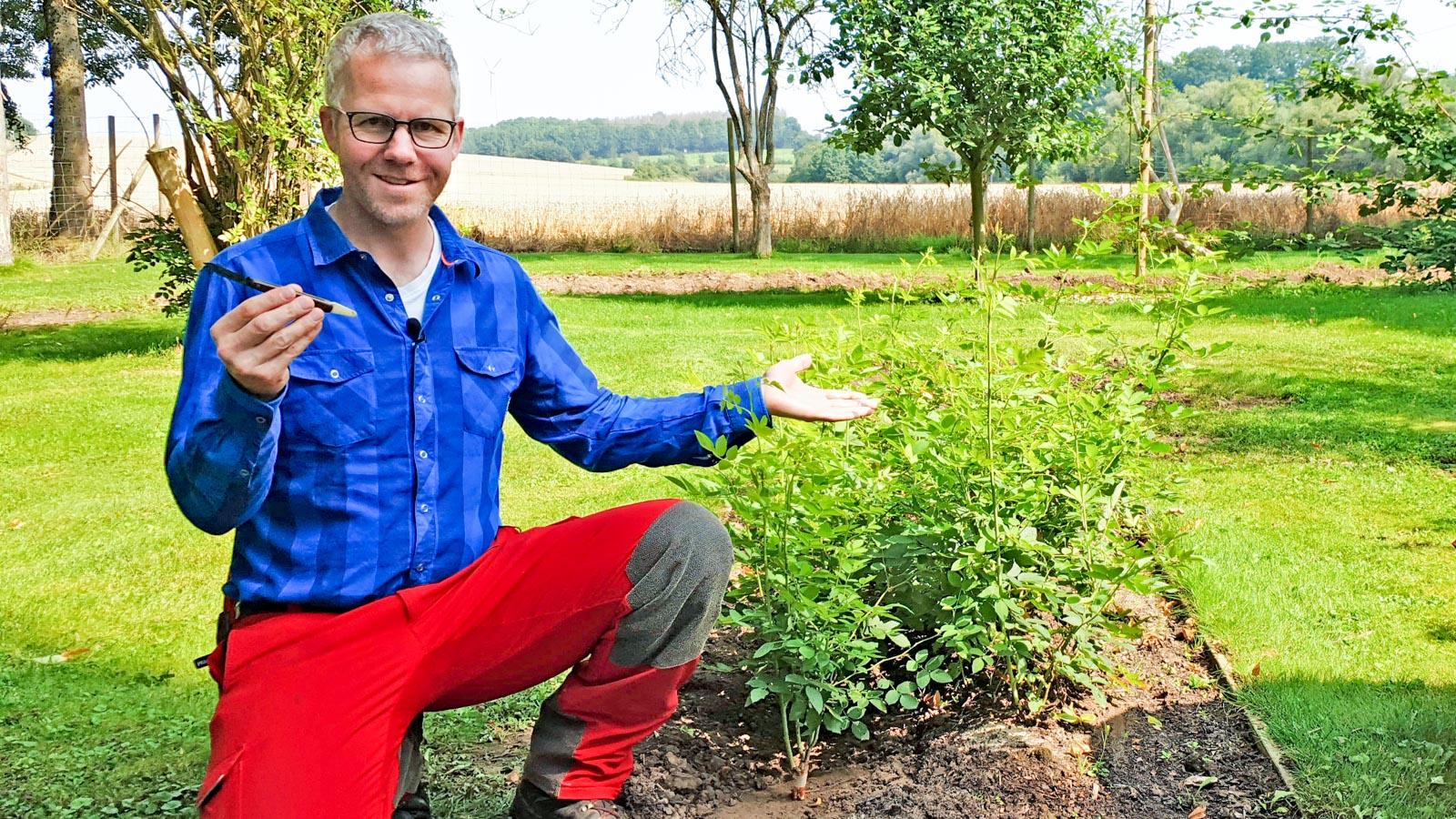 Gartenberater Philippe Dahlmann zeigt auf ein Beet mit Veredelungsunterlagenn