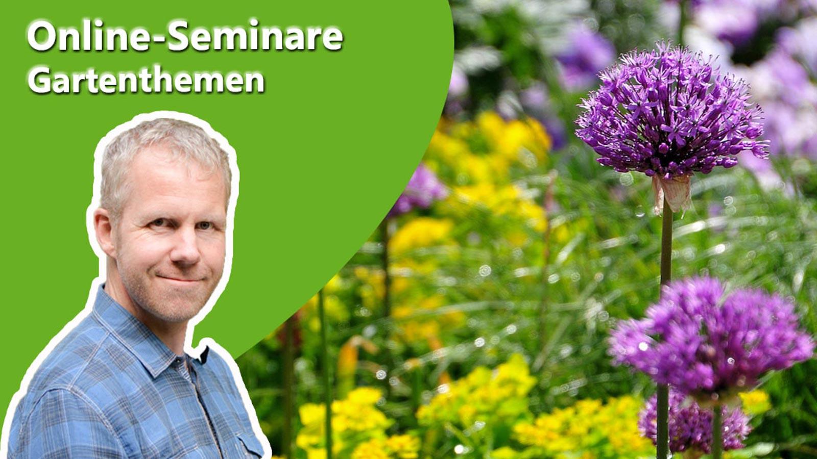 Gartenberater Philippe Dahlmann auf Bild mit einem Zierlauch zu Online-Seminaren des Verband Wohneigentum.
