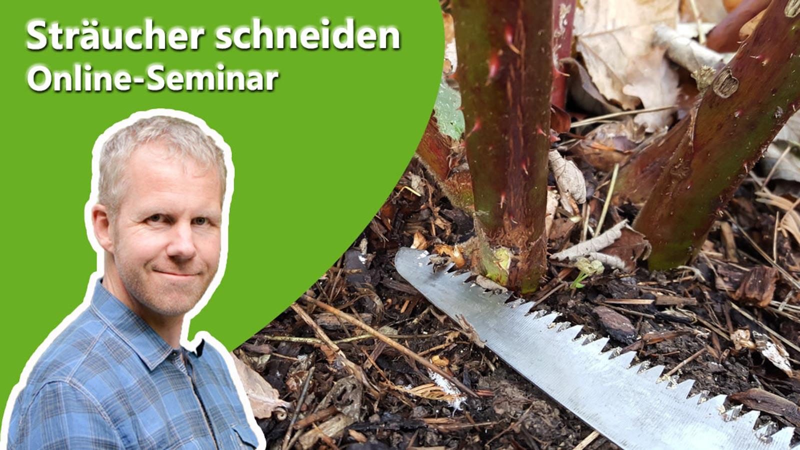 Philippe Dahlmann auf Bild mit einer Säge zur Ankündigung des Online-Seminars Sträucher richtig schneiden.